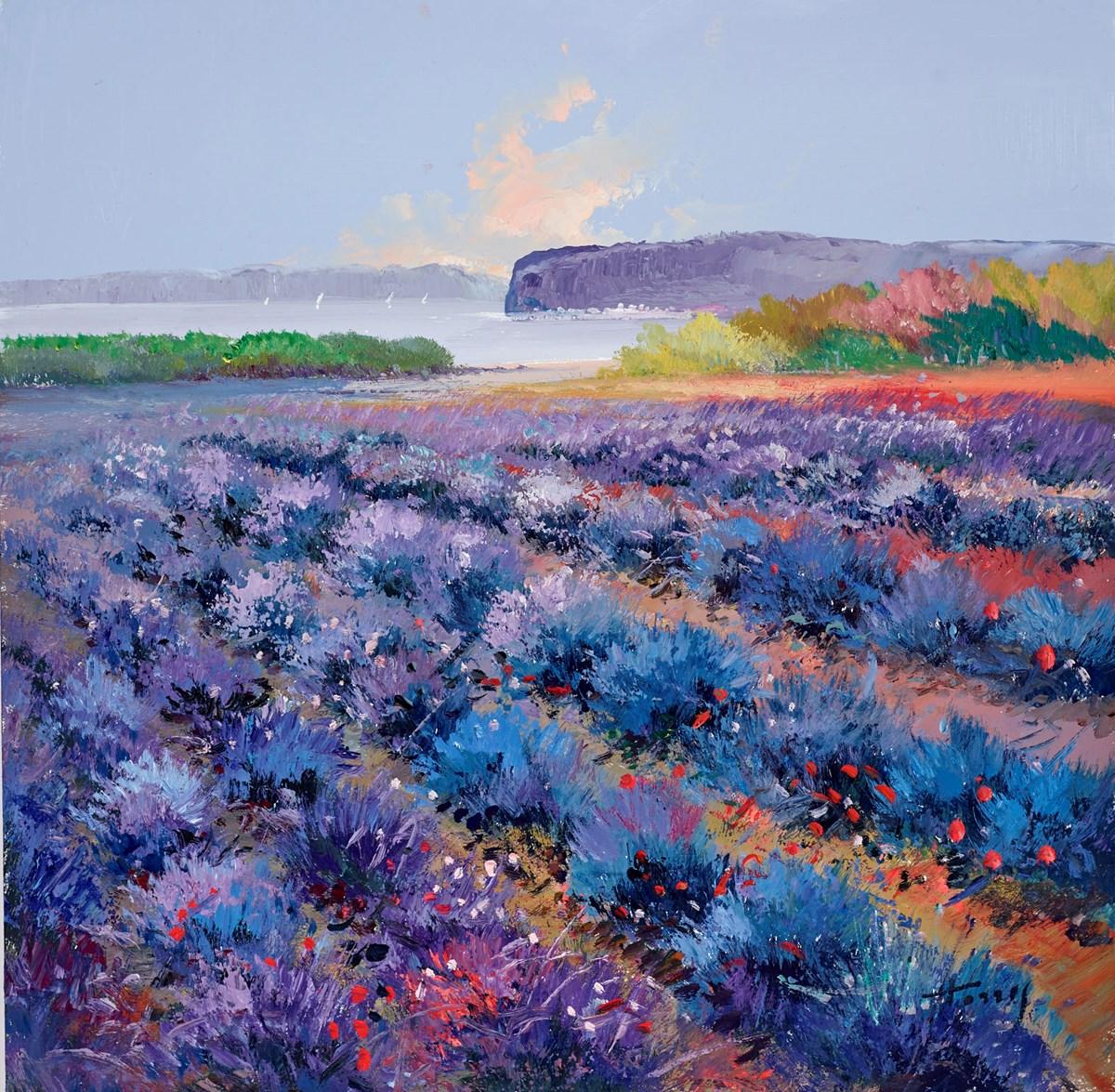 Purple Fields IV